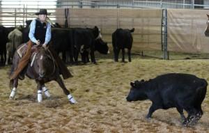 Cutting Horse Trainers in Georgia