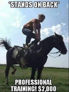 How To Be a Horse Trainer